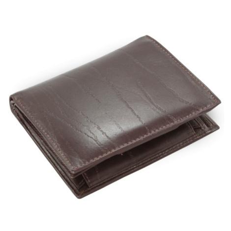 Tmavě hnědá pánská kožená peněženka Kaiden Arwel