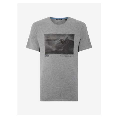 Tričko O'Neill Lm Photoprint T-Shirt Šedá
