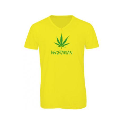 Pánské triko s výstřihem do V Vegetarián