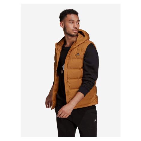 Světle hnědá pánská prošívaná vesta s kapucí adidas Performance Helionic Vest