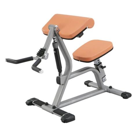 Posilovač bicepsů - Hydraulicline CBC400 Barva černá