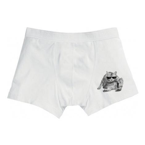 Pánské boxerky Drsná kočka