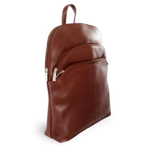 Hnědý kožený moderní batoh Poppy Arwel