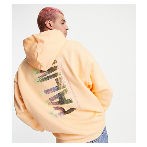 Reclaimed Vintage inspired Palm print hoodie in orange