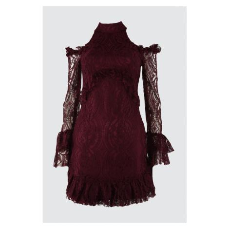 Trendyol Mürdüm Flywheel Detailed Lace Dress