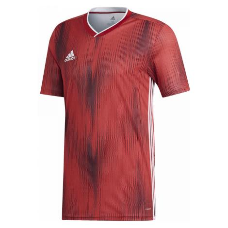 Dres adidas Tiro 19 Jersey Červená / Bílá