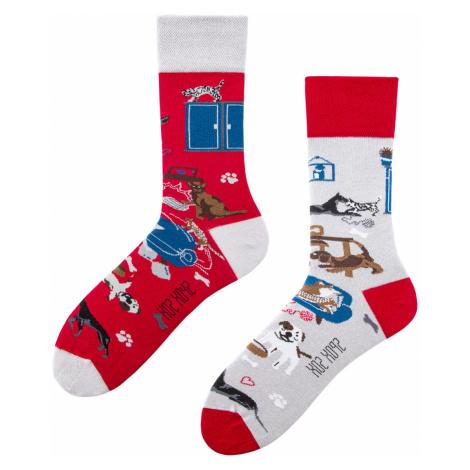 """Ponožky Spox Sox - """"Jak Pies Z Kotem"""" (""""Jak pes s kočkou"""")"""