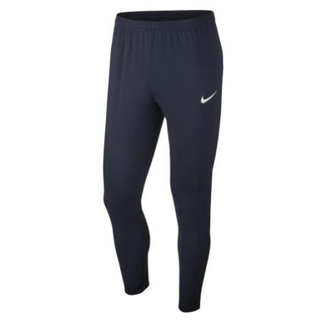 Tréninkové kalhoty Nike Academy Modrá