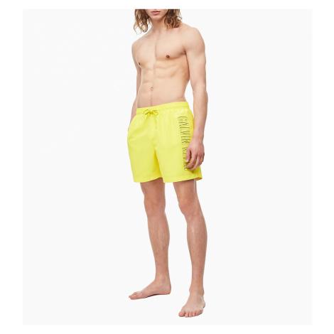 Pánské plavecké šortky KM0KM00381-ZAM - Calvin Klein