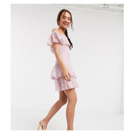 Little Mistress Petite lace ruffle mini dress in blush-Pink