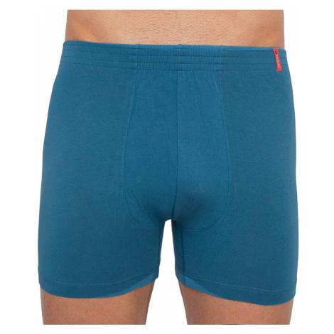 Pánské boxerky Andrie světle modré (PS 5260 C)
