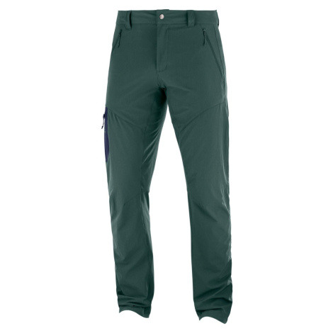 Kalhoty Salomon WAYFARER TAPERED PANT M - zelená 54/S