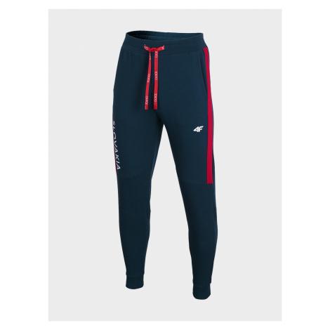 Pánské kalhoty 4F