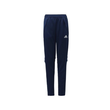 Adidas Kalhoty Condivo 20 Training Modrá