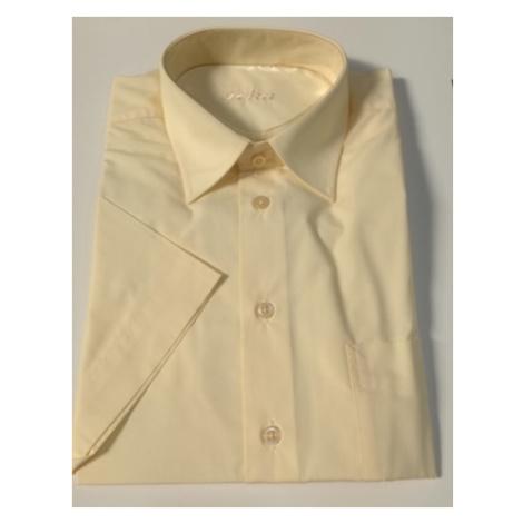 Pánská košile 43565
