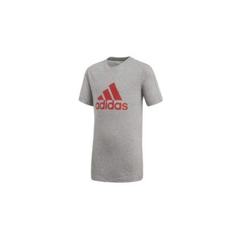 Yb logo tee Adidas
