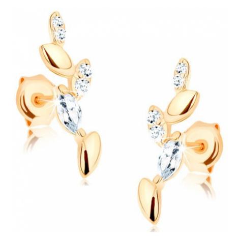 Náušnice ze žlutého 14K zlata - blýskavá větvička, hladké a zirkonové listy Šperky eshop