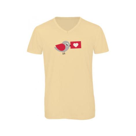 Pánské triko s výstřihem do V Ptáček s dopisem