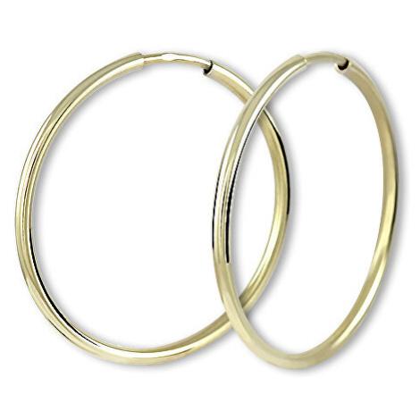 Brilio Náušnice zlaté kruhy 231 00485