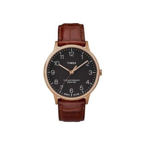 Pánské hodinky Timex TW2R71400
