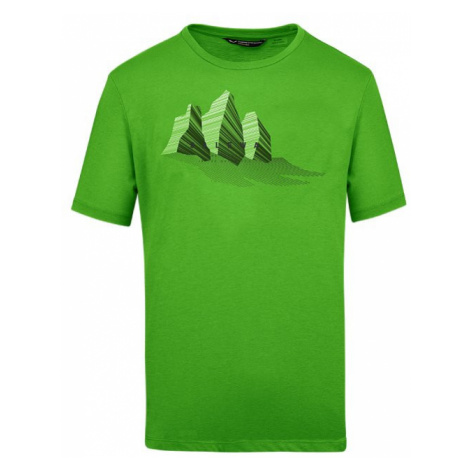 Salewa triko Lines Graphic DRY M, zelená