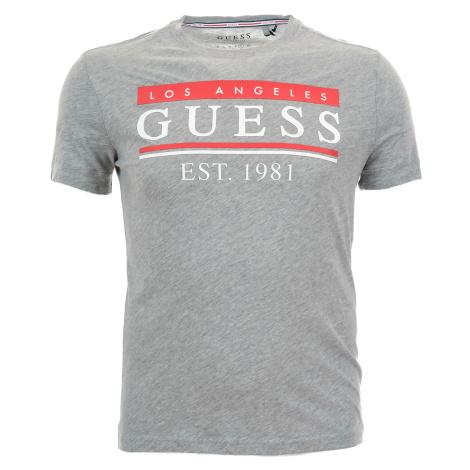 Pánské světle šedé tričko Guess s plastickým potiskem