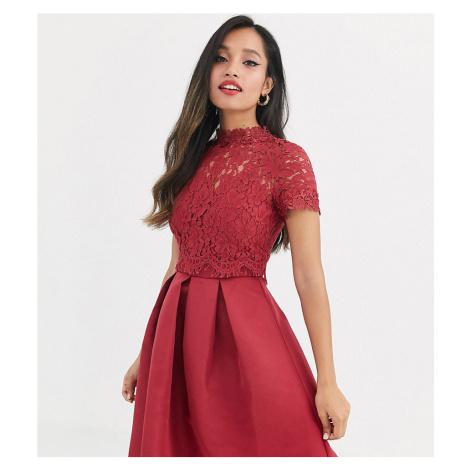 Little Mistress Petite lace upper skater dress-Red
