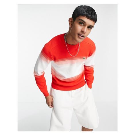 Lacoste stripe crew neck jumper-Red