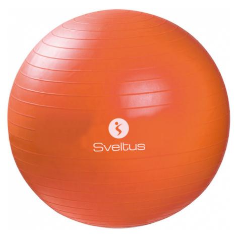 Gymnastický míč 65cm 0496 Sveltus