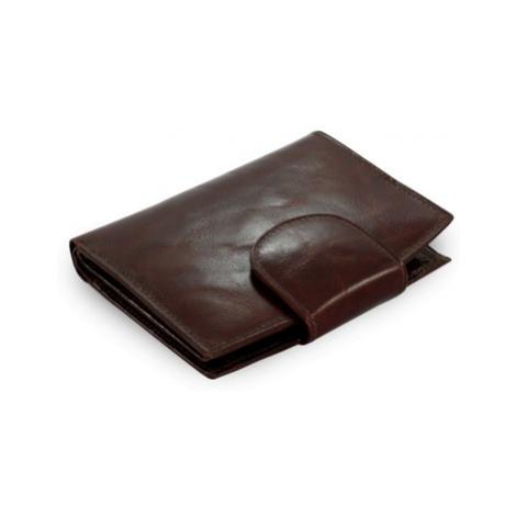 Tmavě hnědá dámská kožená peněženka Filies Arwel