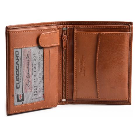 BRIGHT Pánská kožená peněženka na výšku Hnědá, 10 x 2 x 12 (KP00-P15629-13KUZ)