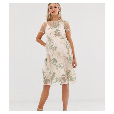 Chi Chi London Maternity embroidered midi dress with sheer overlay in pink-Multi