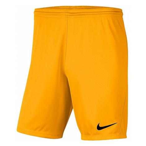 Pánské sportovní kraťasy Nike Dry