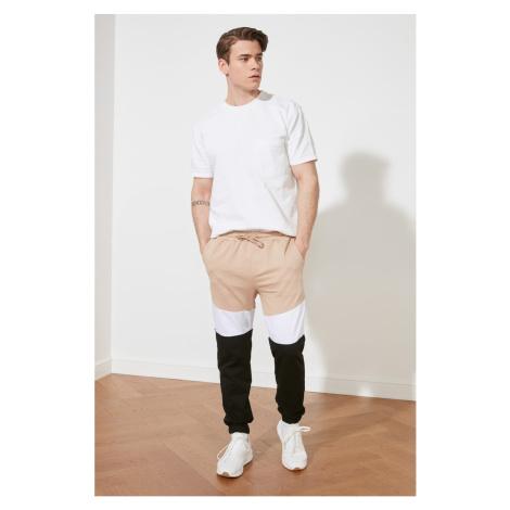 Trendyol Beige Men's Regular Fit Color Block Tracksuit bottom