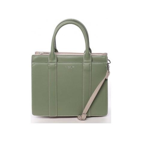 David Jones Malá dámská kabelka do ruky zelená - Akiba Zelená