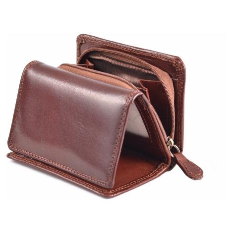 Dámská kožená peněženka na výšku se zipem na mince hnědá, 9 x 0 x 12 (SB00-V908-03KUZ)