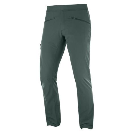 Kalhoty Salomon WAYFARER ALPINE PANT M - zelená
