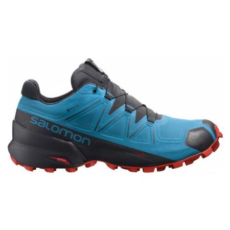 Pánská trailová obuv Salomon Speedcross 5 GTX