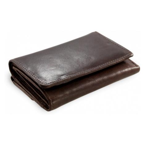 Hnědá dámská kožená peněženka Tracy Arwel