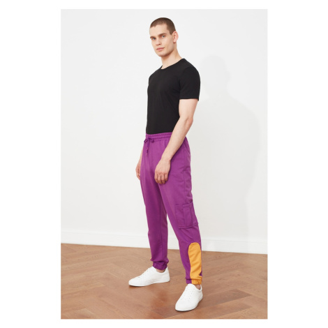 Trendyol Purple Men's Regular Fit Trousers