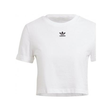 Adidas Crop Top Bílá