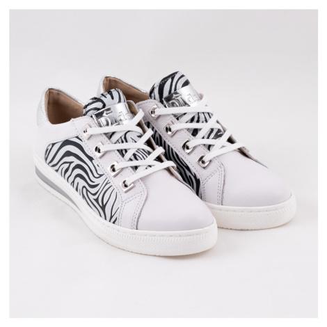 Bílá teniska zebra