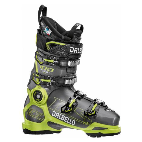 Lyžařské boty DALBELLO DS AX 100 GW MS multicolor