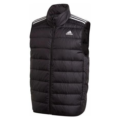 Pánská vesta Adidas Essentials Light Down Hooded