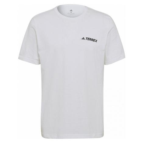 Tričko adidas Terrex Graphic Rocklogo Bílá / Černá