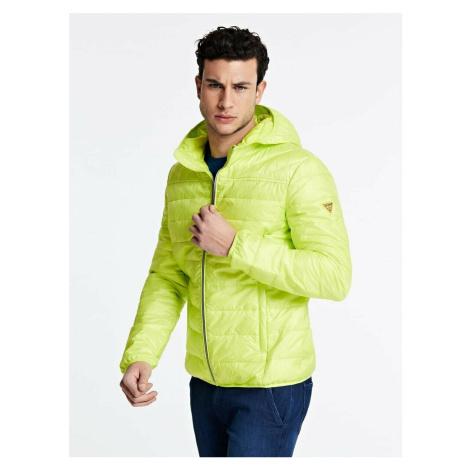 Guess pánská žluto-zelená bunda