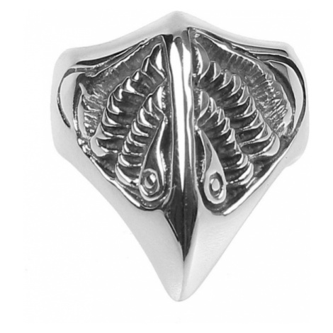 prsten ETNOX - Fantasy Raven - SR1109