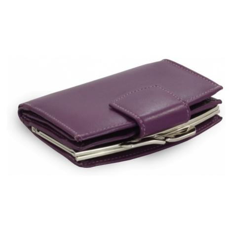Fialová dámská kožená rámová peněženka Norah Arwel