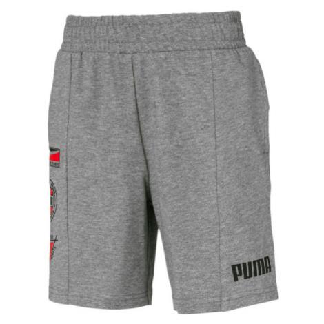Puma ALPHA SUMMER SHORT šedá - Pánské sportovní šortky