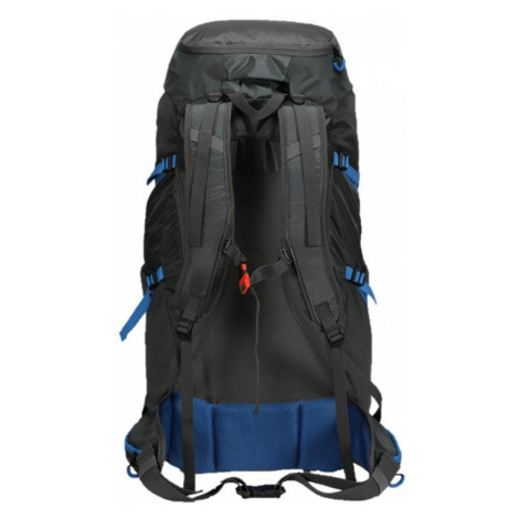 ALPINE PRO Ardene Modrá / Tyrkysově Modrá Outdoorový batoh UBGT125697